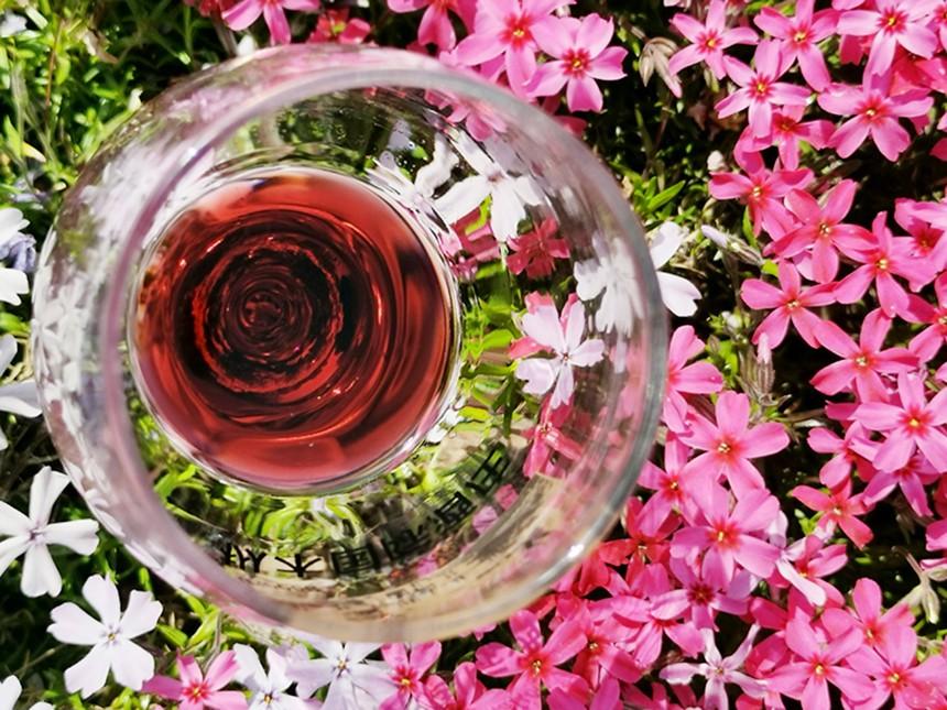   济宁红酒代理|葡萄酒的颜色怎么来的?
